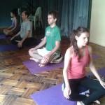 world yoga day 2013